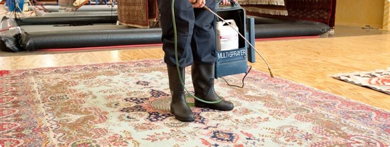 Чистка ковра в домашних условиях ковров 796