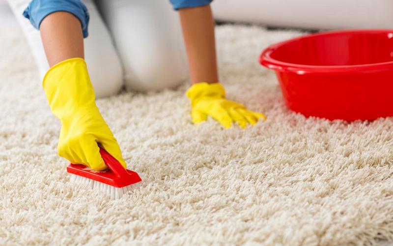 Как вымыть ковер в домашних условия