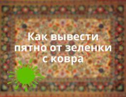 Kak_vyvesti_pyatno_ot_zelenki_s_kovra_Как вывести пятно от зеленки с ковра