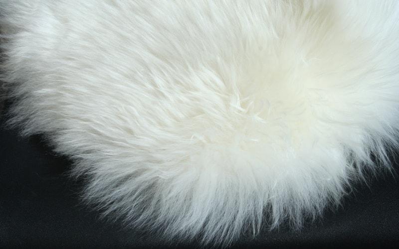 Как почистить натуральную овечью шкуру