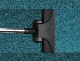 Kak_pochistit_palas_v_domashnih_usloviyah_Как почистить палас в домашних условиях