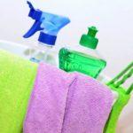 Sredstva_dlya_chistki_palasa_Средства для чистки паласа