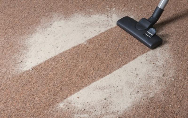 Clean dried cat poop carpet
